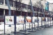 Выпускницы бизнес-школы СКОЛКОВО в фотопроекте Департамента предпринимательства и инновационного развития Москвы