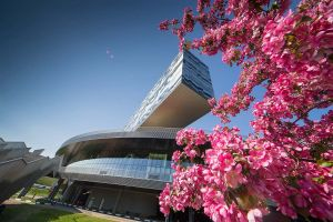 SKOLKOVO: SKOLKOVO Business School features in the top 50 schools based on the FT ranking for custom programmes